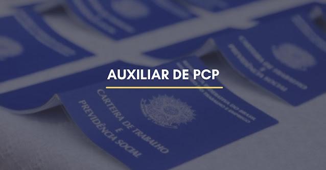 auxiliar de pcp