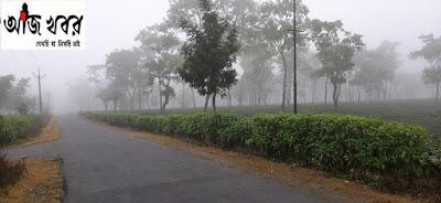 উত্তরবঙ্গে কমছে বৃষ্টি, আগামীকাল থেকে নিম্নচাপের জেরে বৃষ্টির দাপট বাড়বে দক্ষিণে