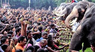 9. Njangattiri Aanayoottu (Elephant Feeding Ritual)