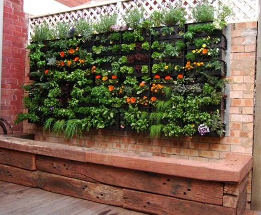 small garden design in home - home and design