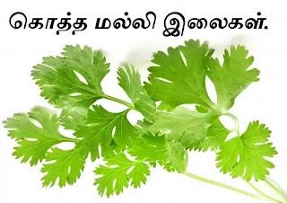 coriander-leaves