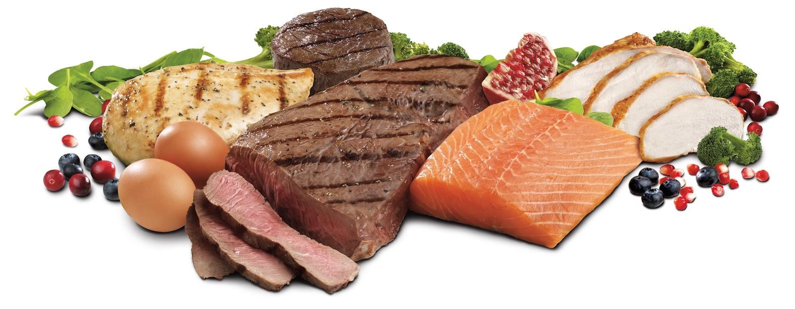 Makanan Yang Mengandung Protein Tinggi Klumeum