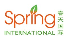 english course in singapore for foreigner Spring College International