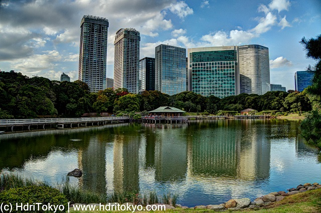 pond at hamarikyu, tall buildings in background