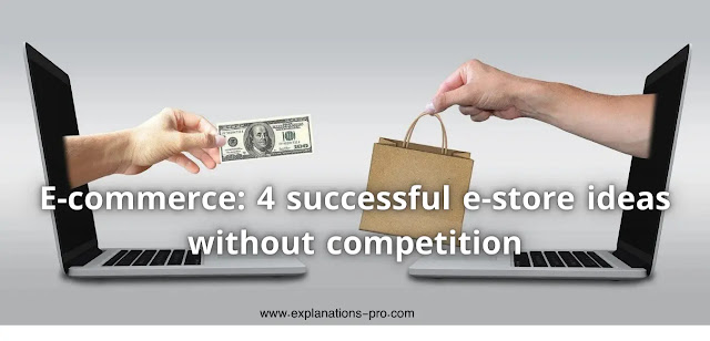4 successful e-store ideas without competition