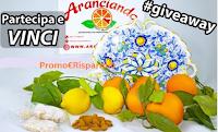 Logo Aranciando : vinci gratis fornitura di agrumi, paté, mandorle , paste di mandorle e piatto in ceramica decorato
