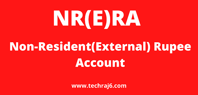 NR(E)RA full form, What is the full form of NR(E)RA