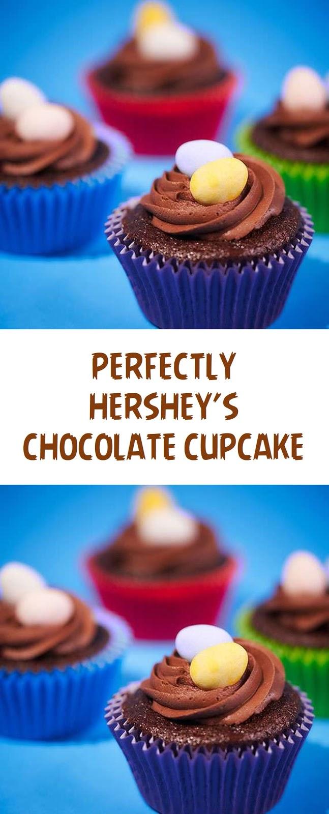 Hershey's Chocolate Cupcake