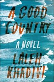 https://www.goodreads.com/book/show/26499704-a-good-country?ac=1&from_search=true