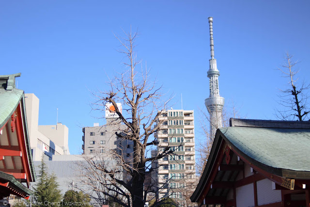 Touring the Tokyo Skytree - Temple, Ice Skating and City Lights