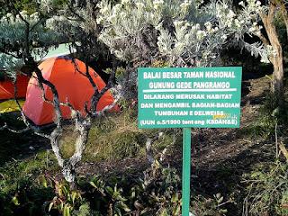Wisata Alam Taman Nasional Gunung Gede-Pangrango