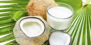 santan kelapa bahan pelembab wajah alami