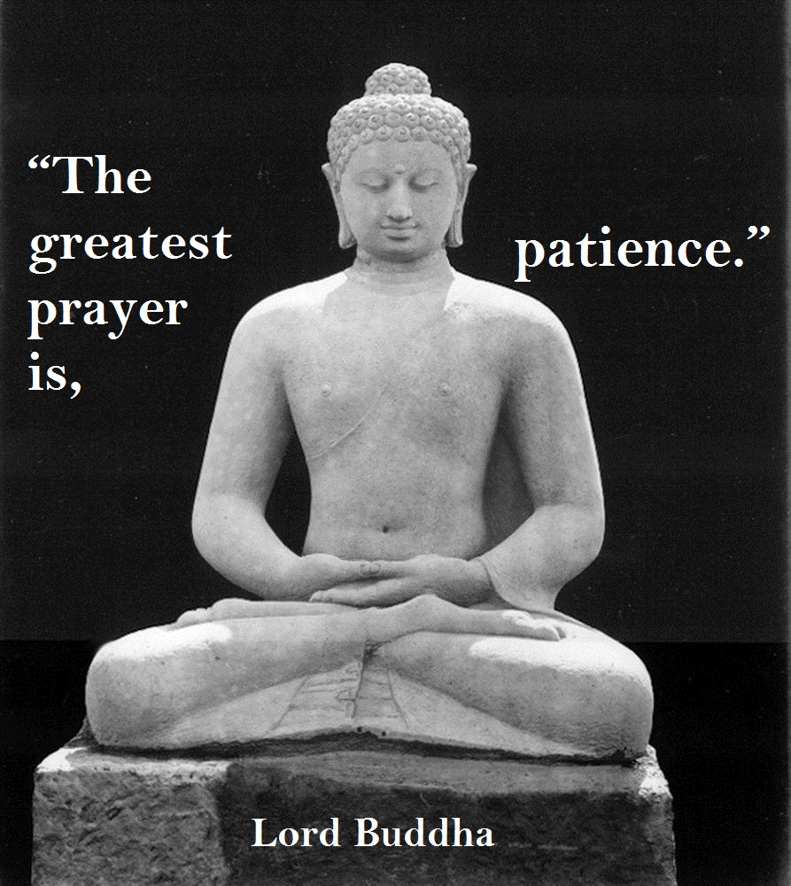 Quotes By Buddha: 1000+ Images About Buddha Quotes On Pinterest
