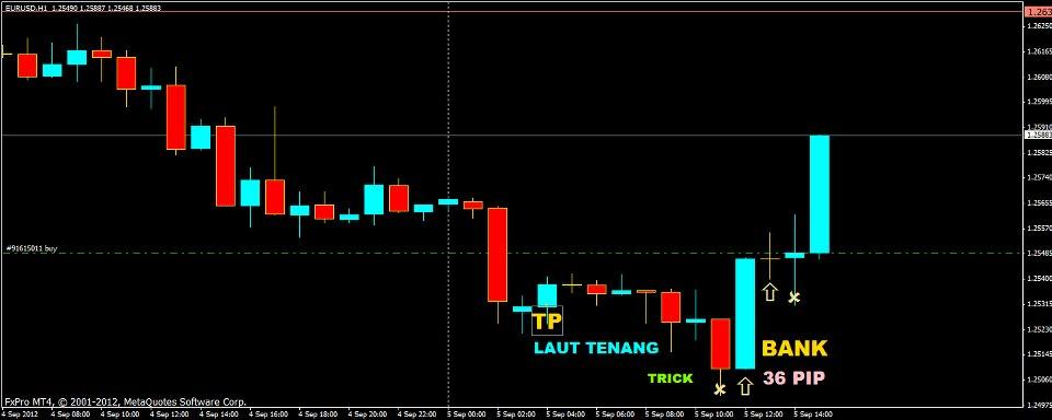 Indikator tbst forex