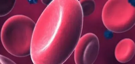How do I know that I have anemia