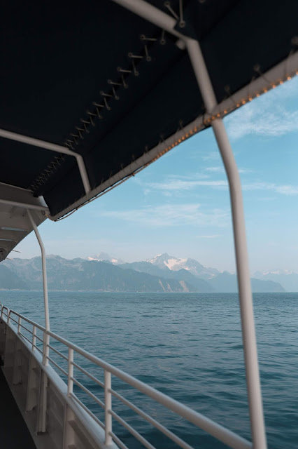 Major Marine Tour, Kenai Fjords