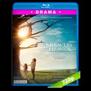 Los milagros del cielo (2016) BRRip 720p Audio Ingles 5.1 Subtitulada
