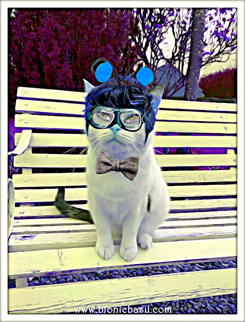 Smooch's Crazy Selfie ©BionicBasil® Caturday Art