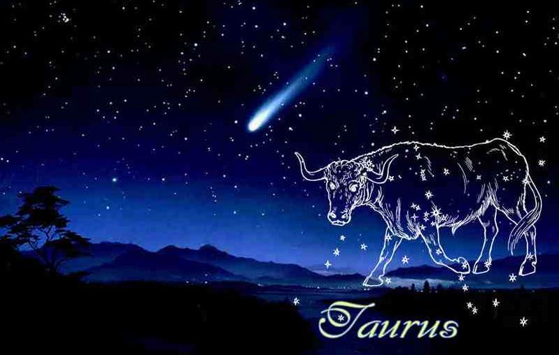 Ramalan Bintang Taurus Agustus 2017
