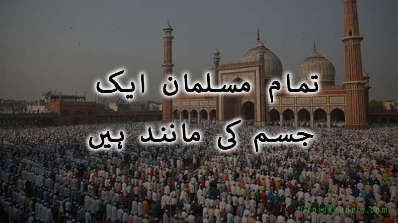 all Muslims are one