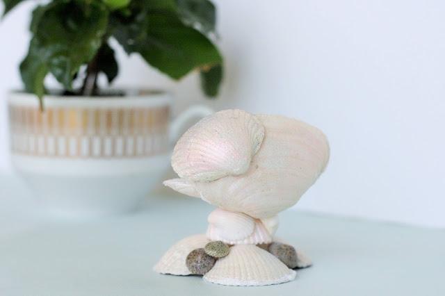 Schmuckaufbewahrung aus Muscheln machen