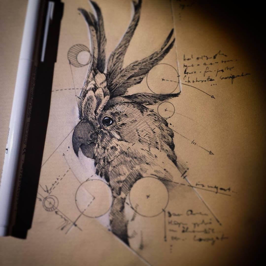 10-Parrot-Cockatoo-Bird-psdelux-Geometric-Animal-Sketches-and-1-Alien-www-designstack-co