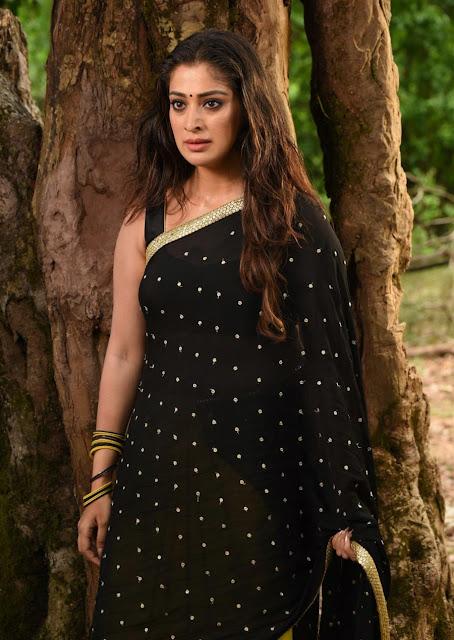 Actress Laxmi Rai Hot Pics In Saree Navel Queens