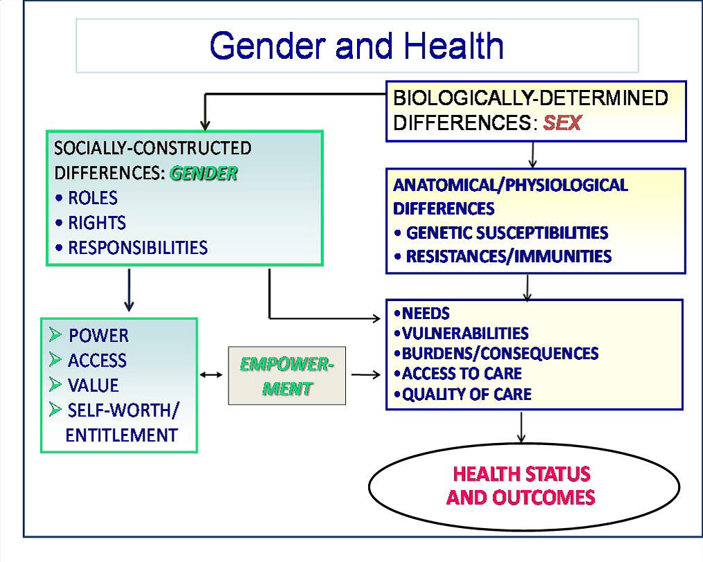 khadubhai ias women empowerment gender equality and women s gender affects health outcomes through male and female differences in roles access and power and sex deferentially affects the health of women and men