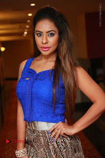 Telugu Actress Srilekha Reddy Latest HD Pos in Sleeveless Blue Top at Muse Art Gallery  0009.JPG