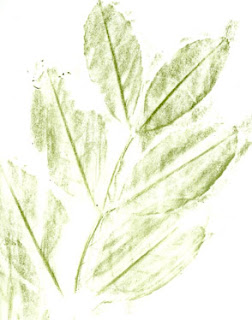 SHADED LEAF DRAWING