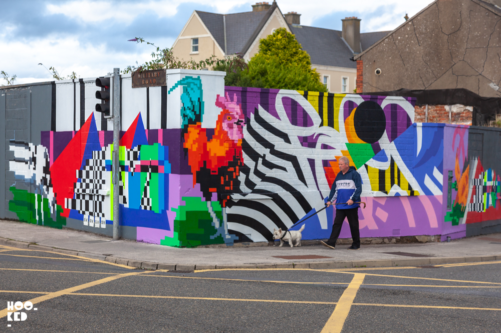 Waterford Street Art mural by Irish artist Omin