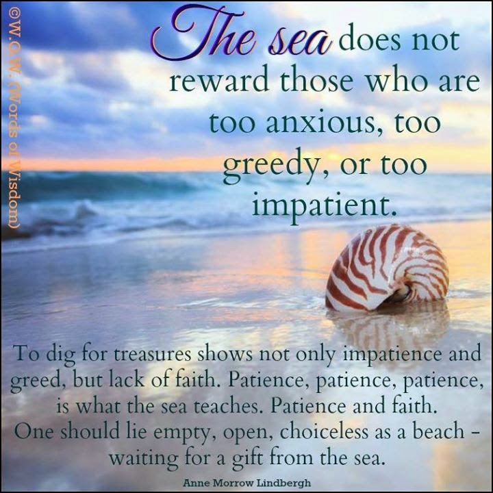 THE SEA DOES NOT REWARD THOSE WHO ARE TOO ANXIOUS, TOO