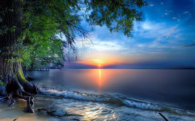 Que hoje Deus zele pela tua noite,   ilumine tua mente,   alivie o peso dos teus problemas,   conceda paz e conforto para que   no amanhã que estar por vir   consigas vencer mais uma   pequena batalha diária,   com sorriso e alegria no viver.  Boa Noite!