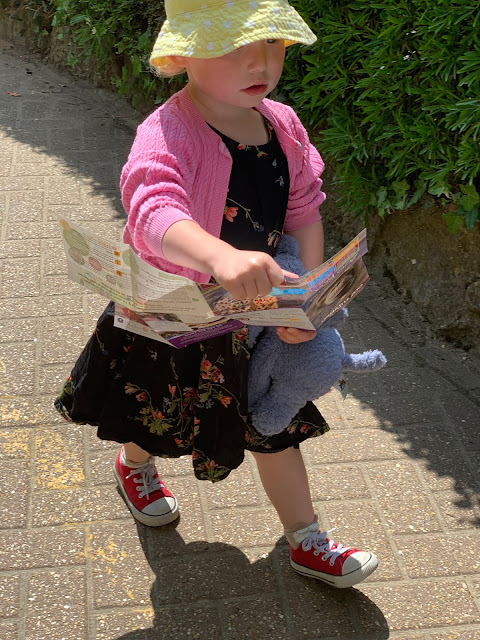 A Toddler dressed ready for a sunny day at the zoo walking with the colchester zoo map