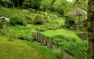 The sloping garden at Nant Y Bedd