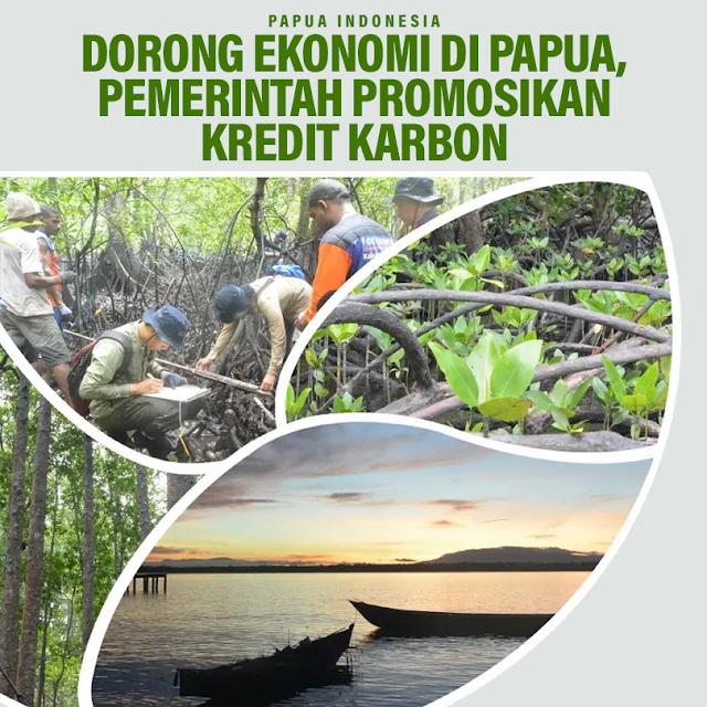 dorong-ekonomi-di-papua-pemerintah-promosikan-kredit-karbon