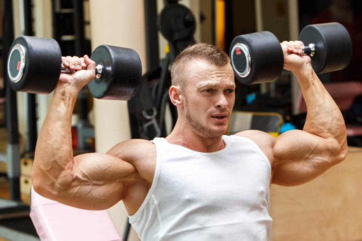 8 Rules To Muscle Hypertrophy