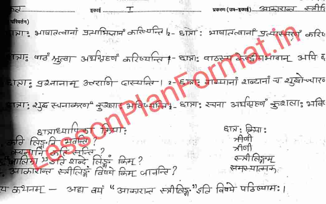 Sanskrit Lesson Plan Class 8