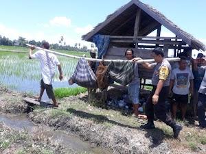 Sengketa Tanah Berujung Maut, Satu Warga di Desa Welado Tewas Dianiaya