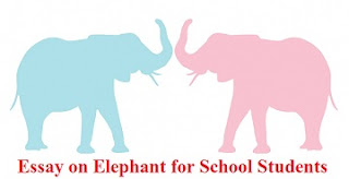 Essay on Elephant for School Students
