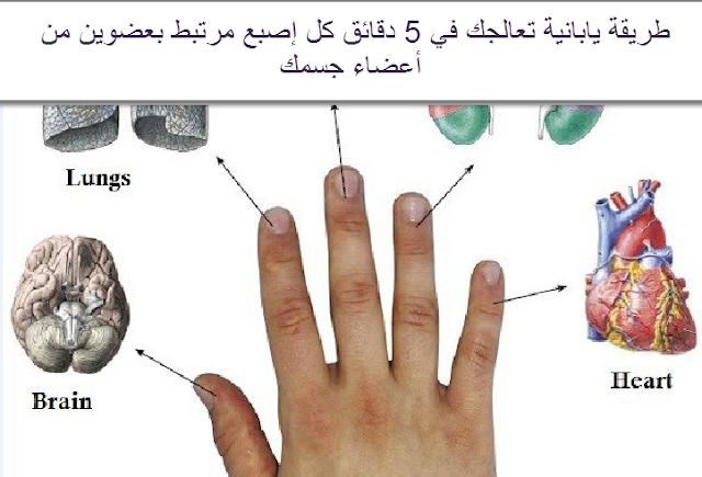 طريقة يابانية تعالجك في 5 دقائق كل إصبع مرتبط بعضوين من أعضاء جسمك!!
