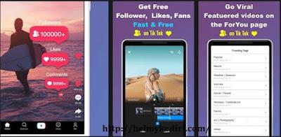 TikFamous for tik tok followers, likes, fans