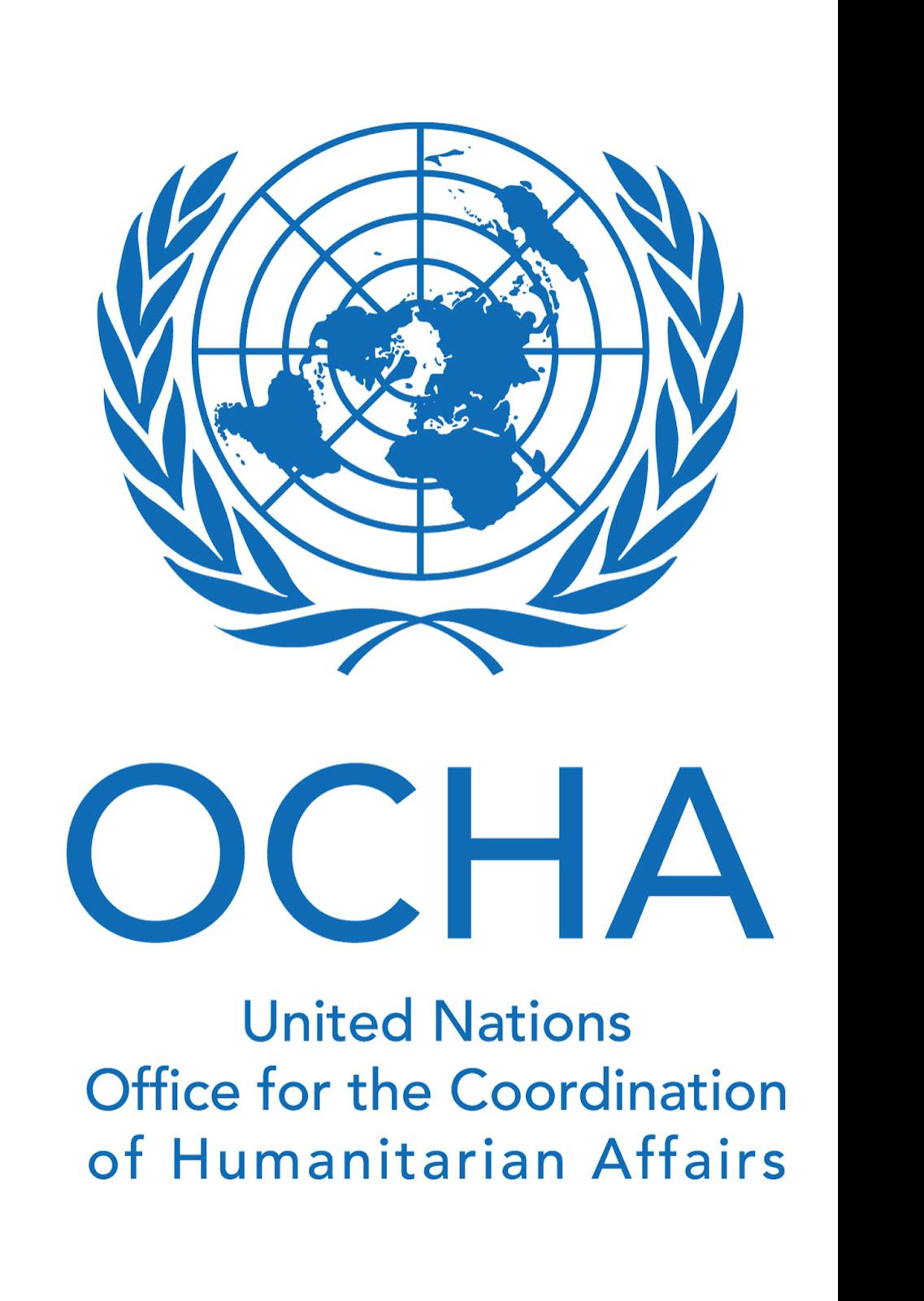 un-ocha-logo Job Application Form In Lebanon on blank generic, free generic, part time,