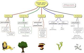 http://www.mappe-scuola.com/2017/05/i-regni-della-natura.html