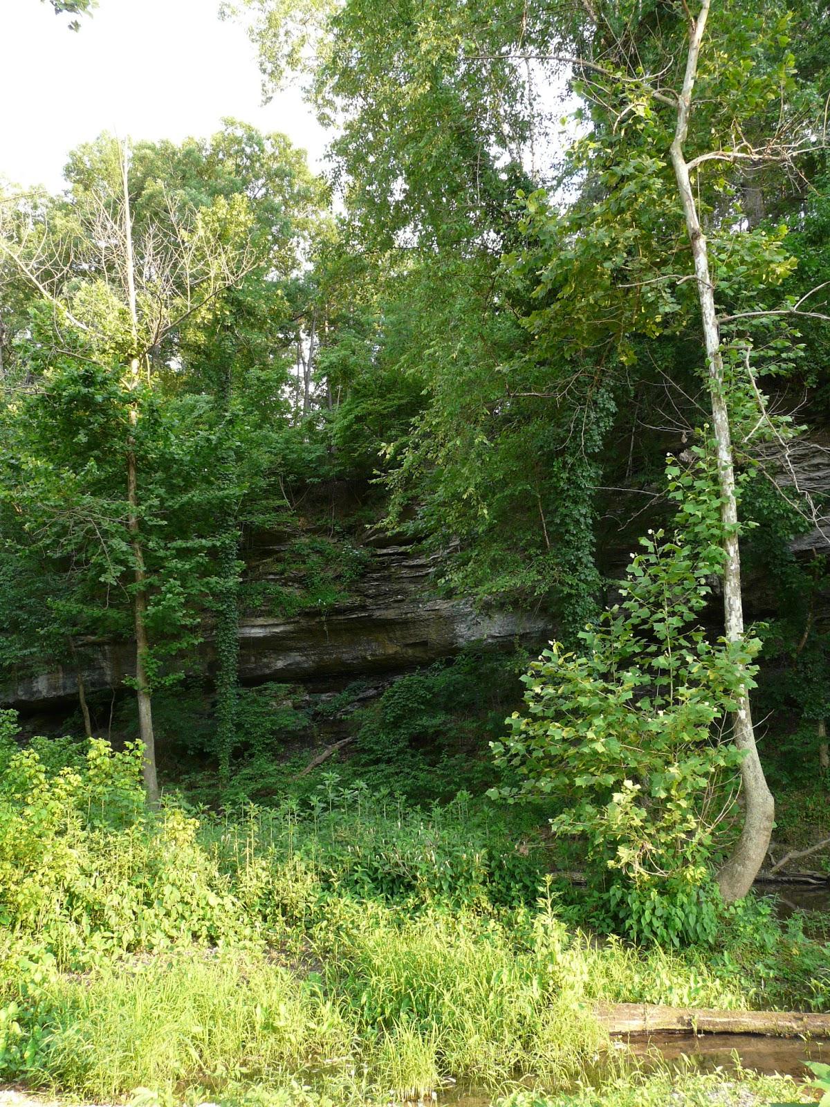 Vacation in Ozark Mountains, Missouri | Bluegreen Vacations  |Ozark Plateau