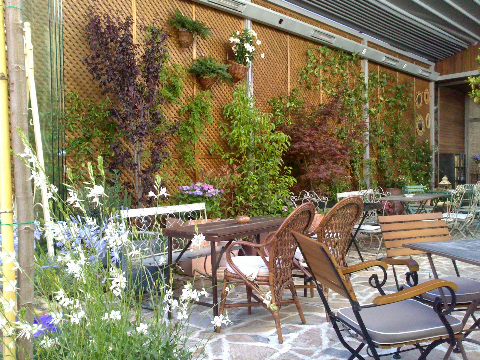 El Jardin Secreto De Salvador Bachiller Un Oasis En El Centro De