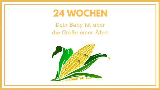 24 WOCHEN SCHWANGER: