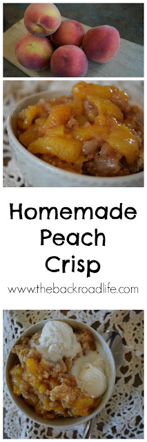 Homemade peach crisp is a delicious summer treat!