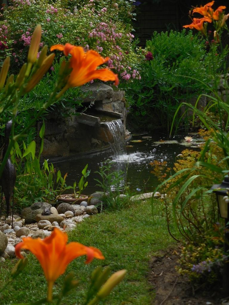 Cagouille\'s Garden : Le petit jardin de Saint Fiacre