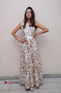 Telugu Actress Reshmi Thakur in Long Dress at Plus One ( 1) Audio Launch  0066.jpg